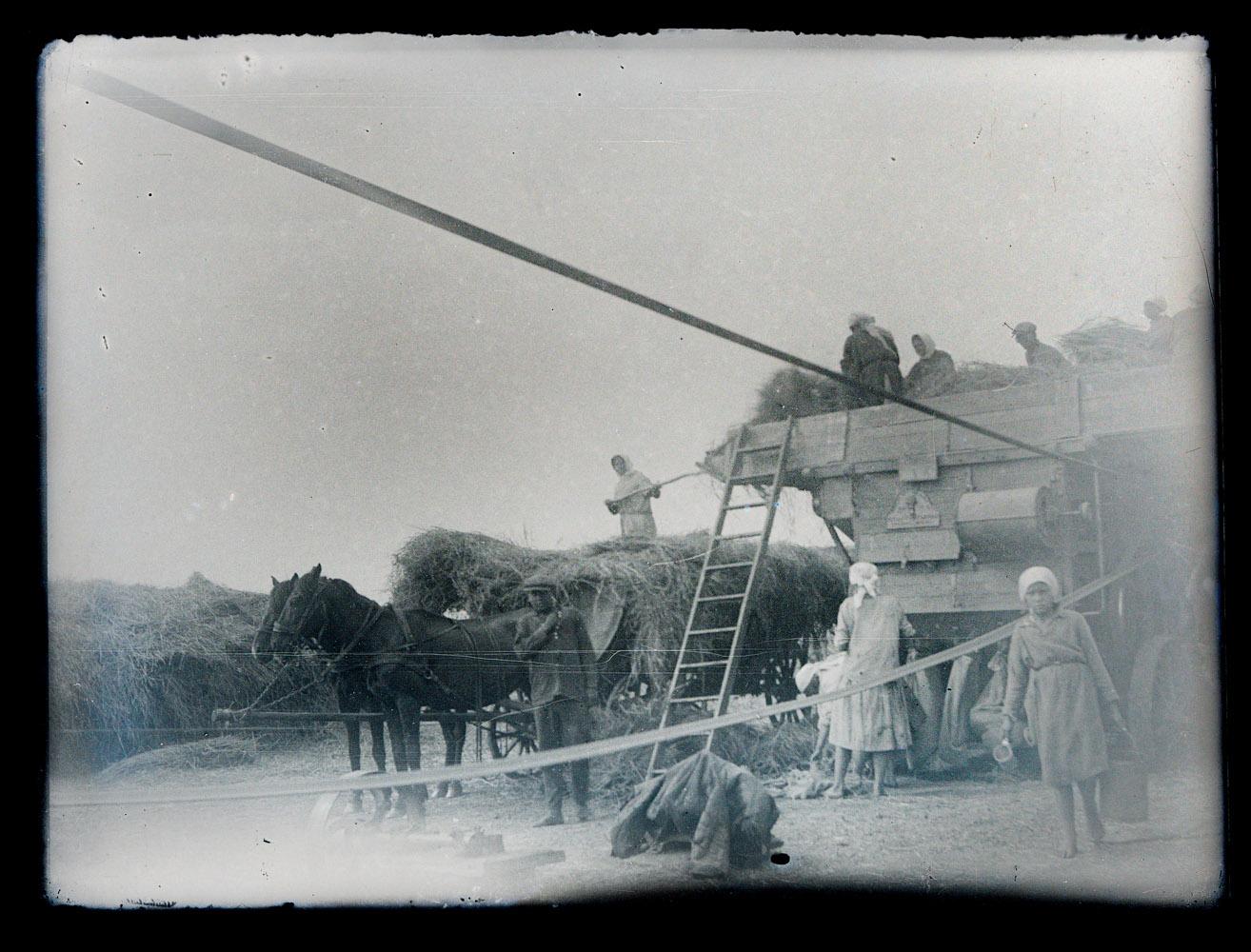 Селяни на хлібозаготівлі 1933 рік